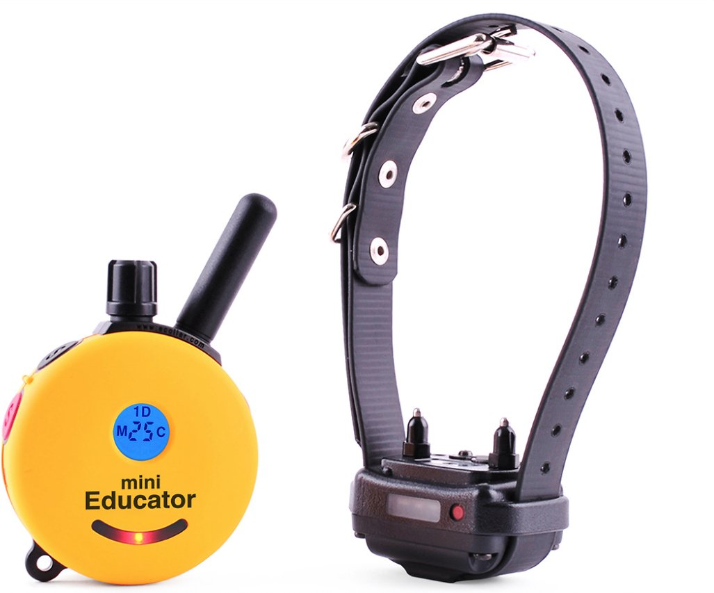 Educator E-Collar Remote Dog Training Collar- Best Dog Training E-Collar Reviews