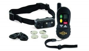 PetSafe Little Dog Remote Trainer Package