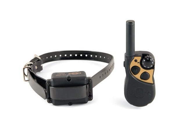 Best Remote Dog Training Collar Reviews