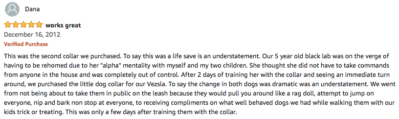 dog training collars reviews