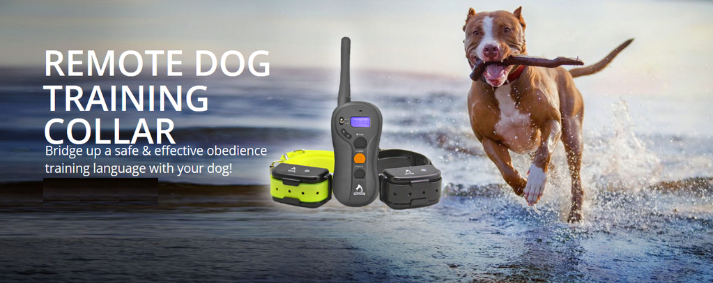 waterproof dog collars